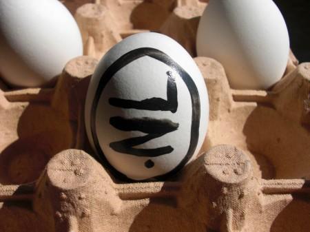 .NL Egg